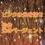 60万個の光の世界!仙台光のページェントの魅力と噂をご紹介!