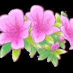 京都 女子一人旅で静かに過ごせる庭園 おすすめ3選ーGo to キャンペーンを利用していってみよう